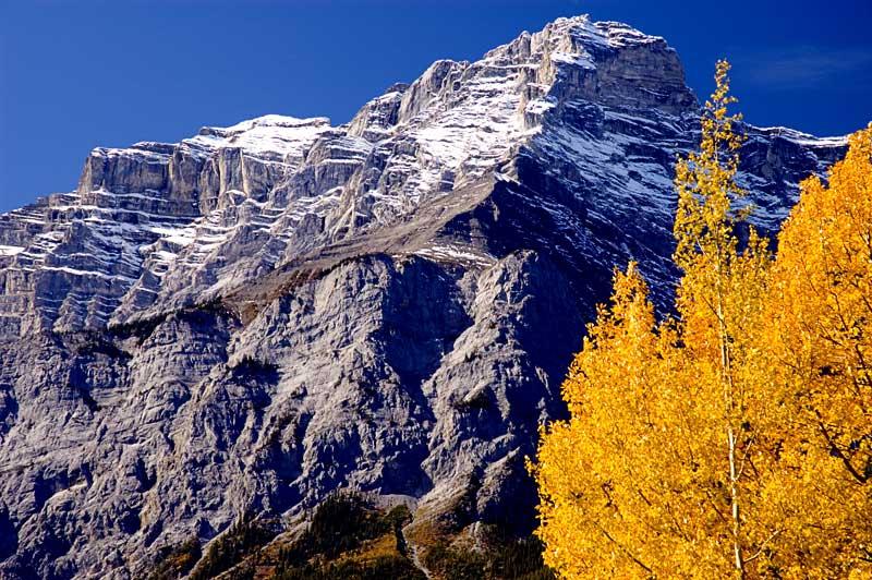 Autumn colors near Banff